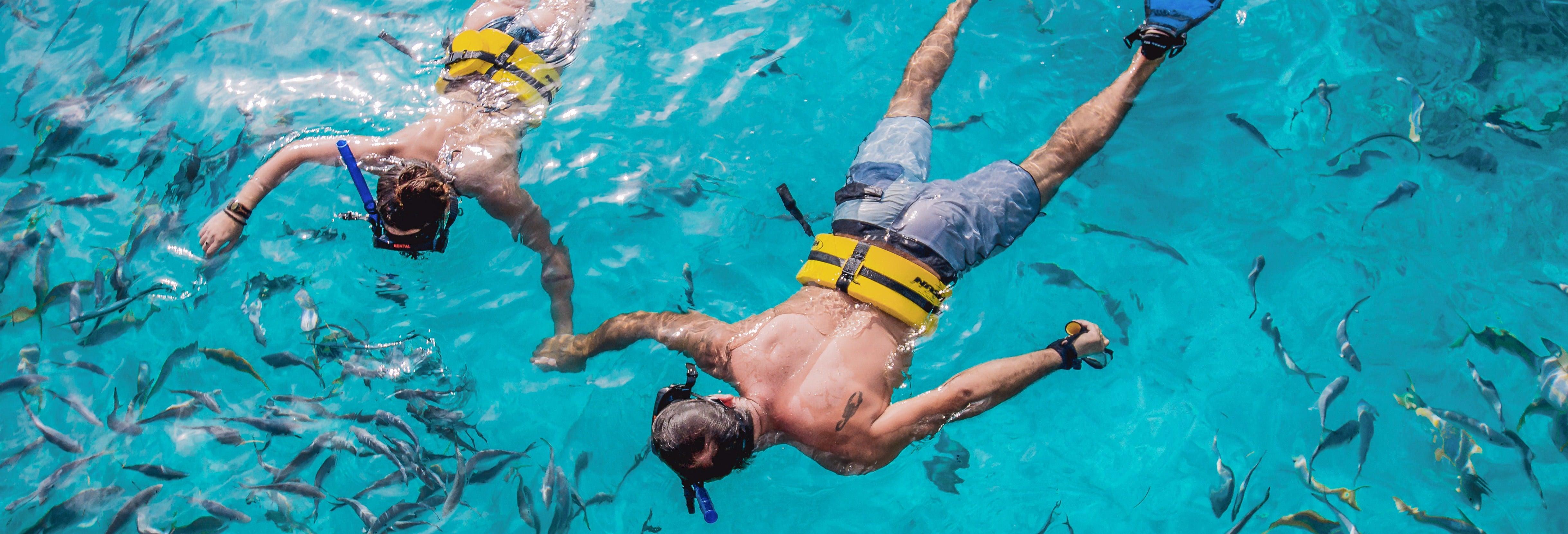 Excursión al Reef Explorer