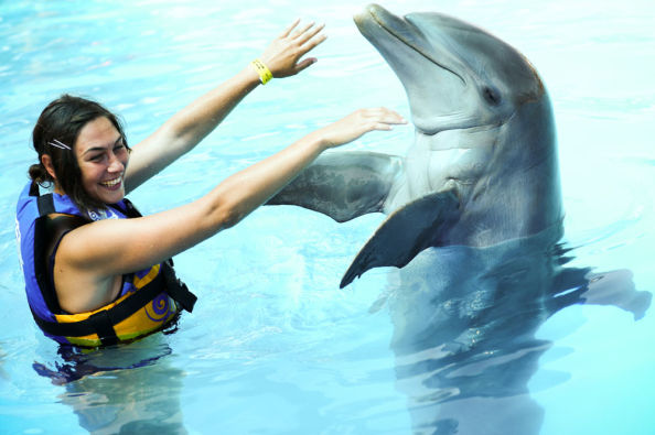 Hugging a dolphin