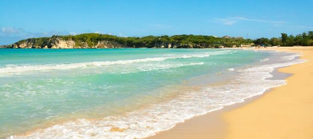 Tour en buggy por Punta Cana