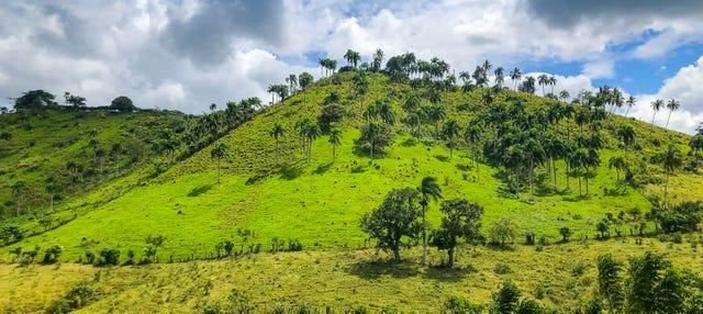Truck Safari por Punta Cana