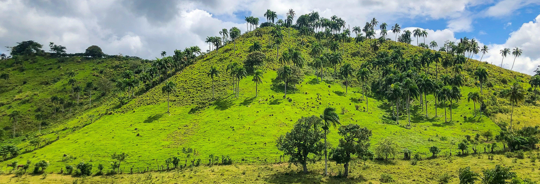 Truck Safari a Punta Cana
