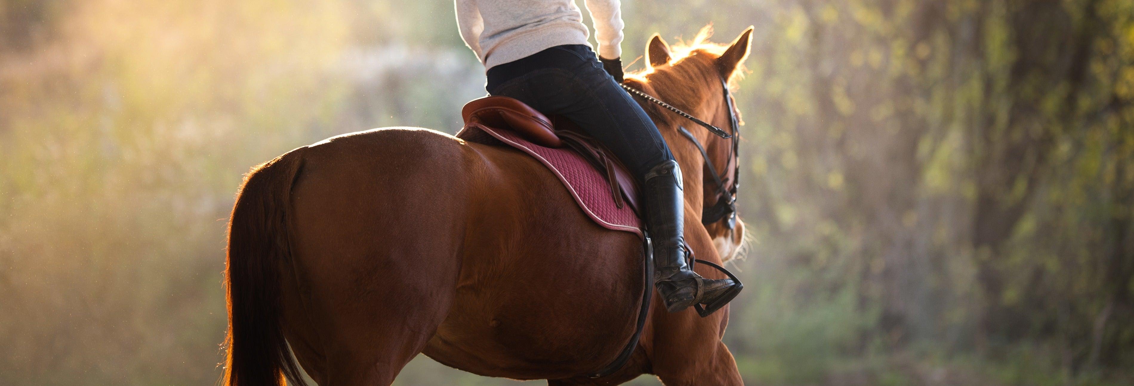 Balade à cheval à Saint-Christophe