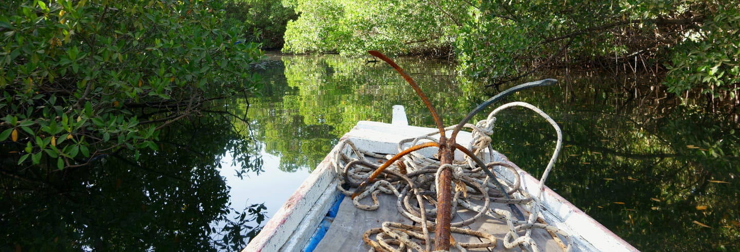 Saloum Delta Private Tour