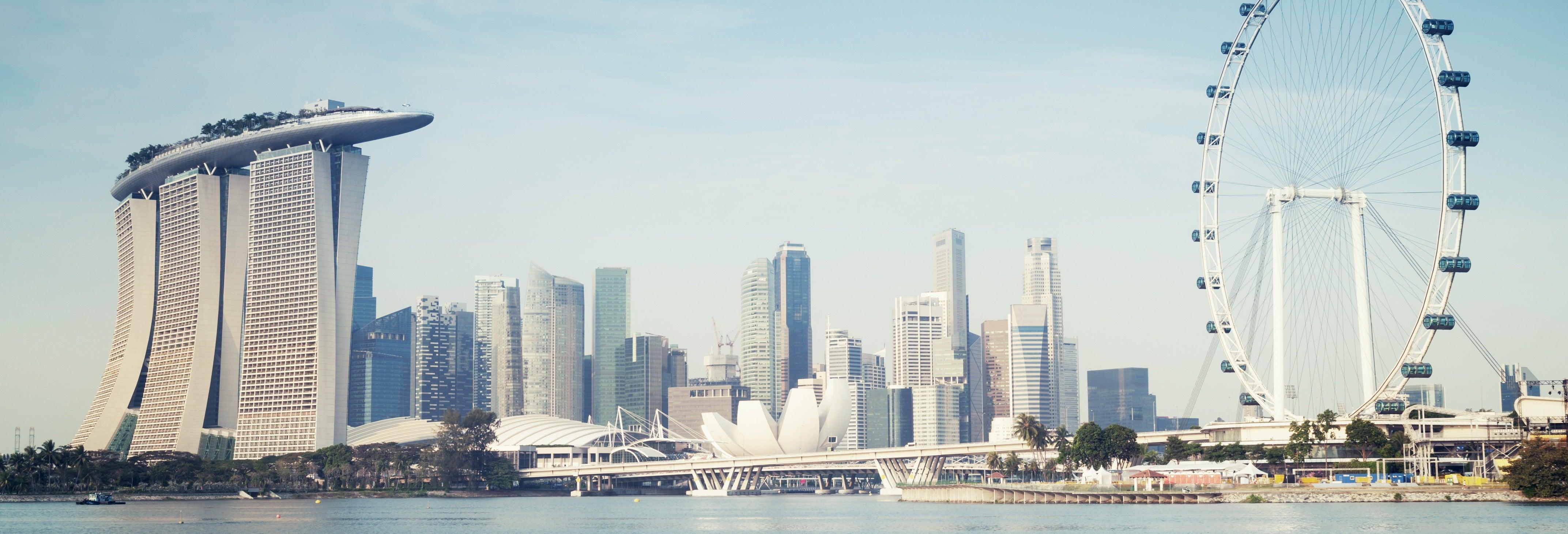 Entrada a Singapore Flyer