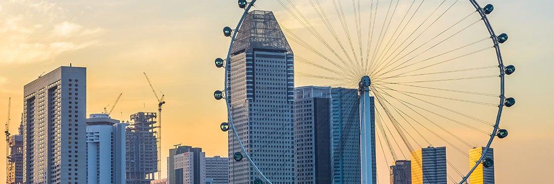 La ruota panoramica di Singapore