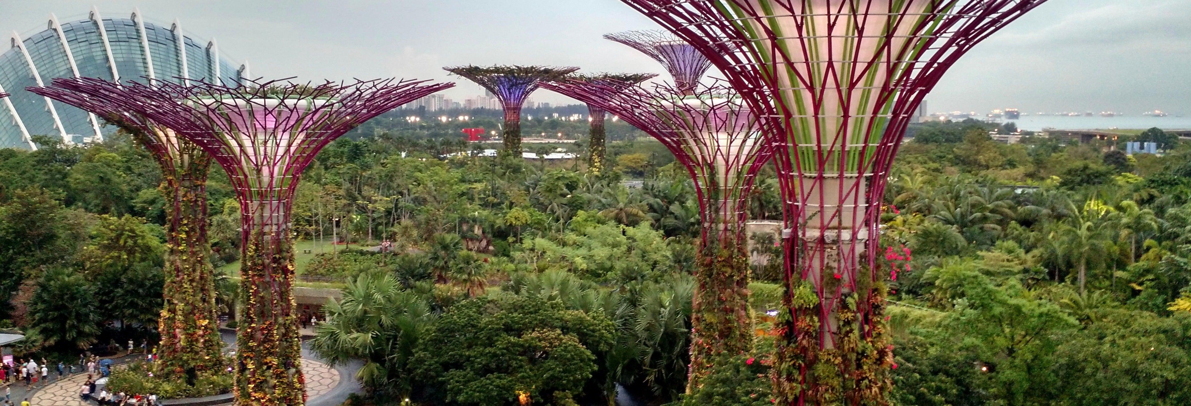 Tour privado por Marina Bay Sands e Gardens by the Bay