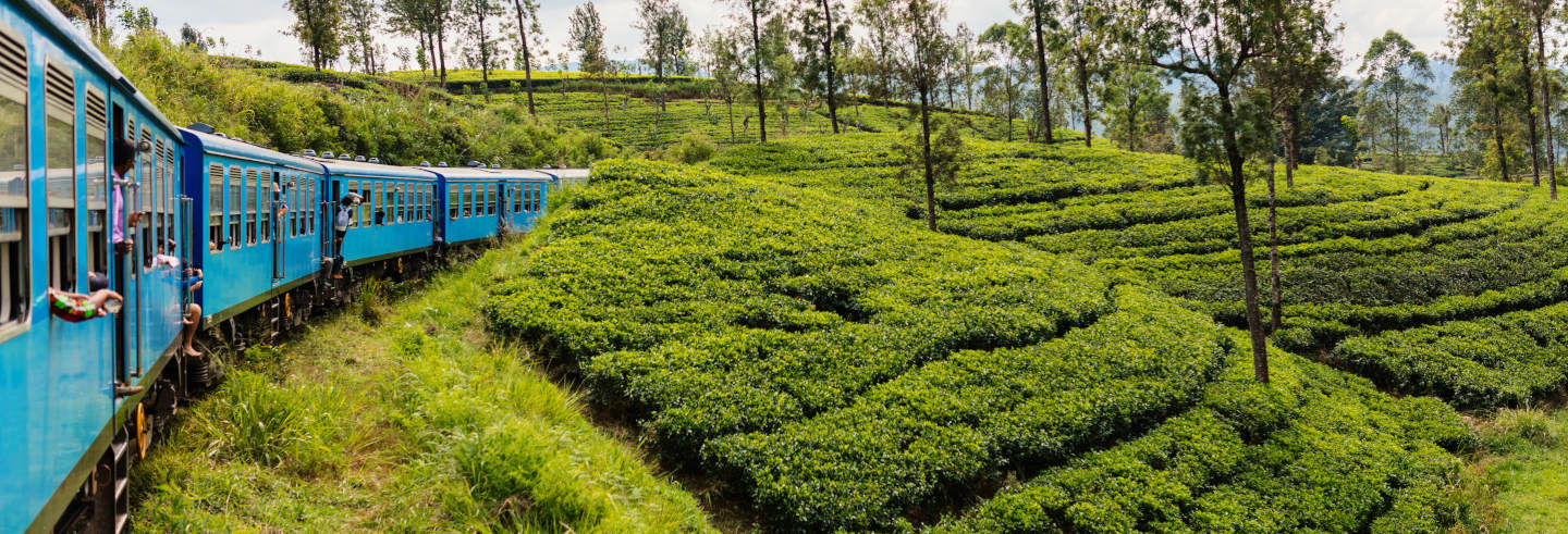 Escursione privata a Kandy