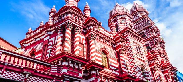 Visita guiada privada por Colombo