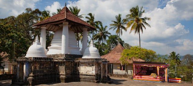 Tour privado por los templos de Kandy