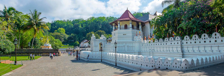 Excursão privada a Kandy