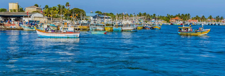Tour de tuk tuk por Negombo + Passeio de barco