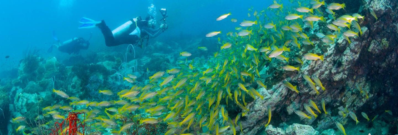 Curso PADI Advanced Open Water Diver