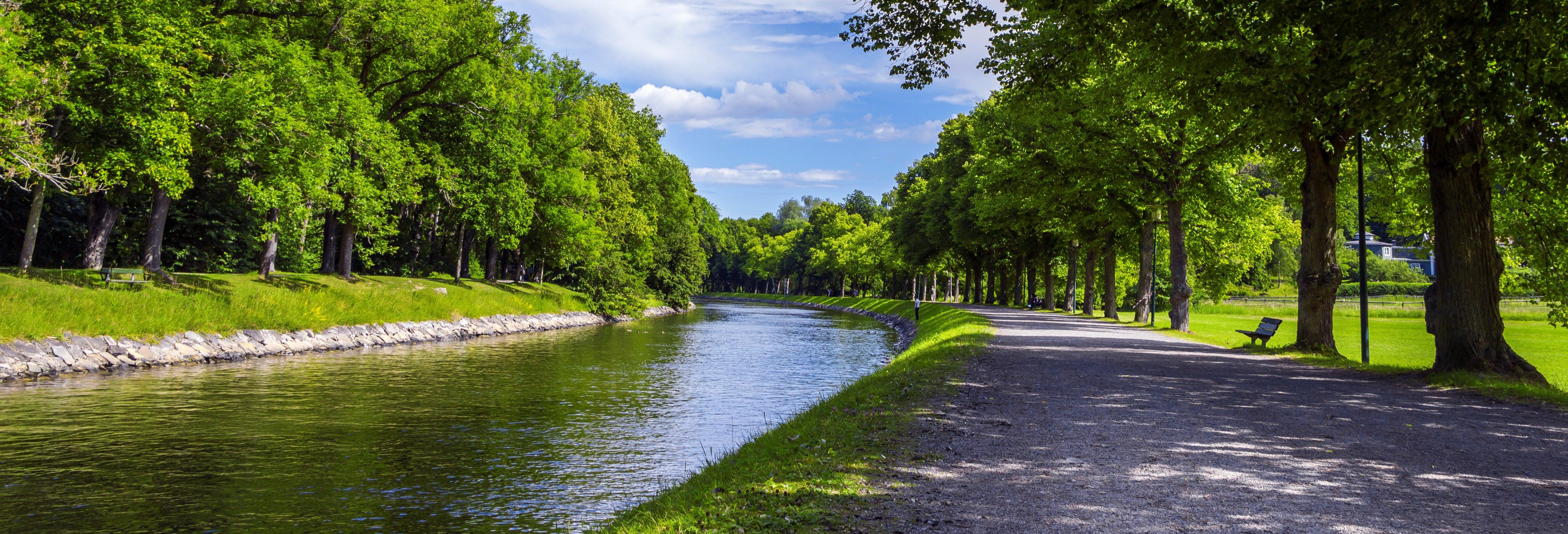 Paseo en barco por el canal real