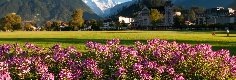Excursion privée en français depuis Genève