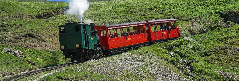 Excursión a la garganta del Aare + Tren Brienz Rothorn