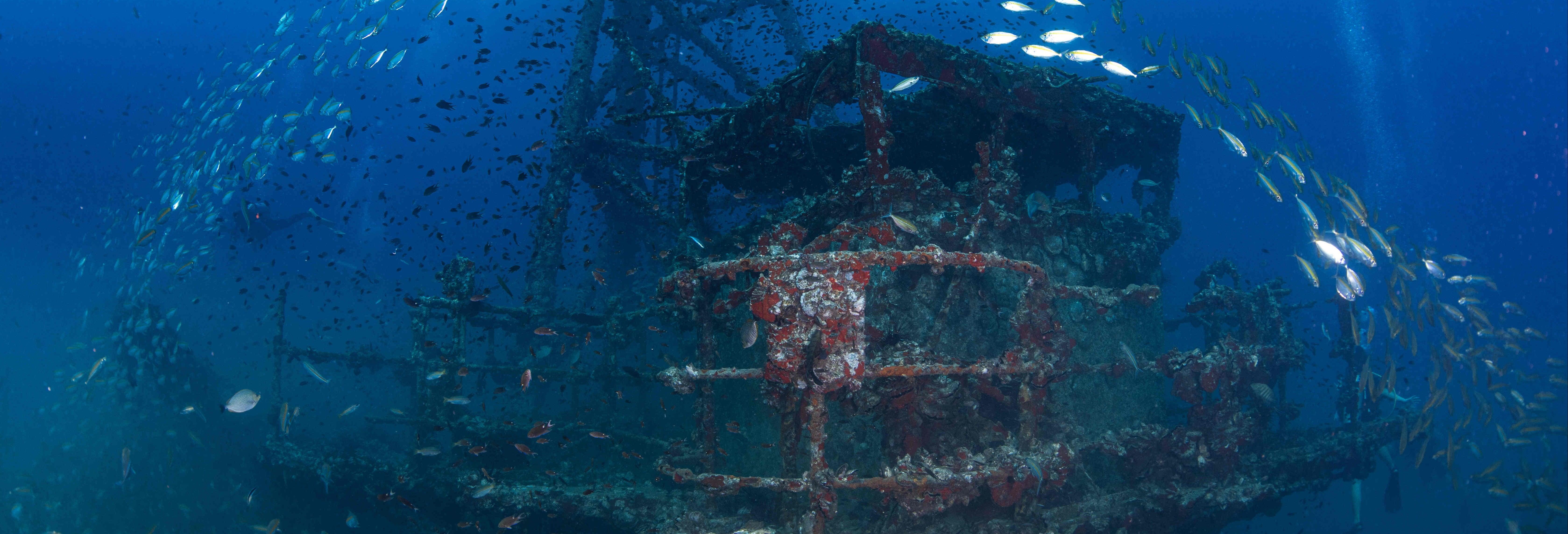 HTMS Chang Shipwreck Scuba Dive