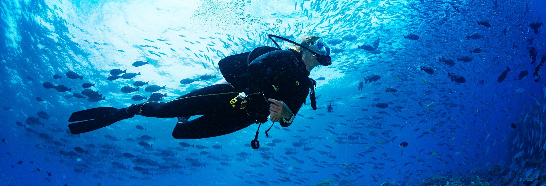 Scuba Diving in Koh Kut