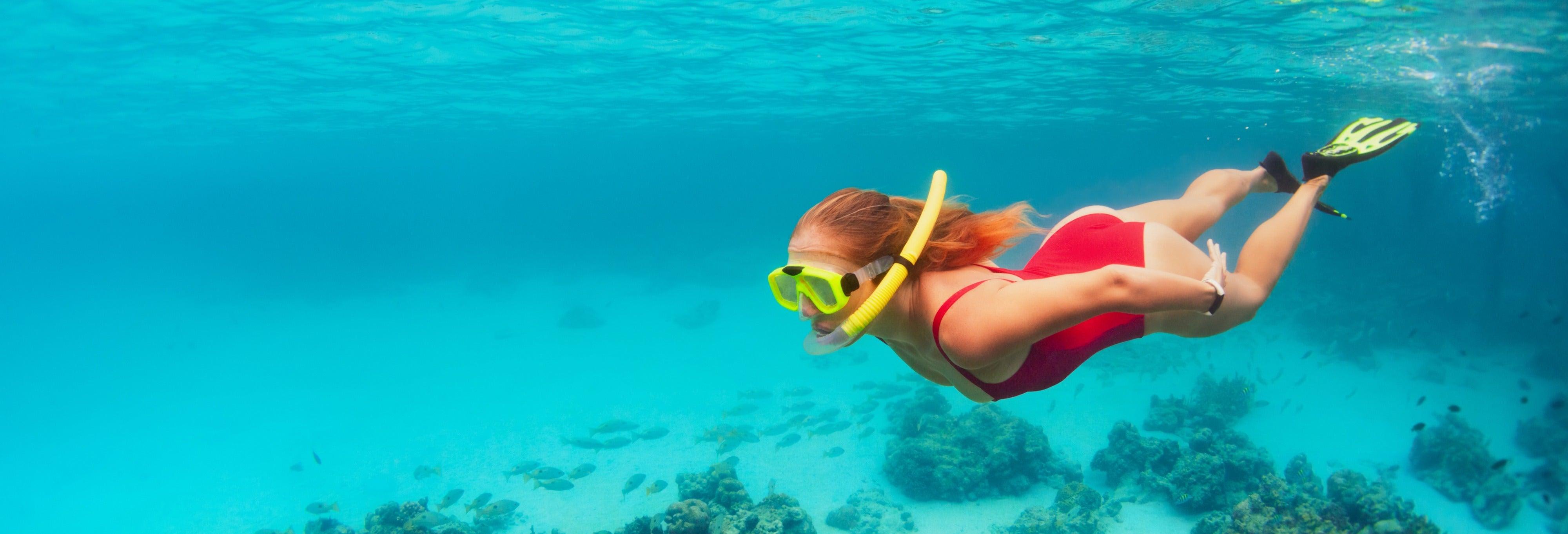 Snorkeling a Koh Kut