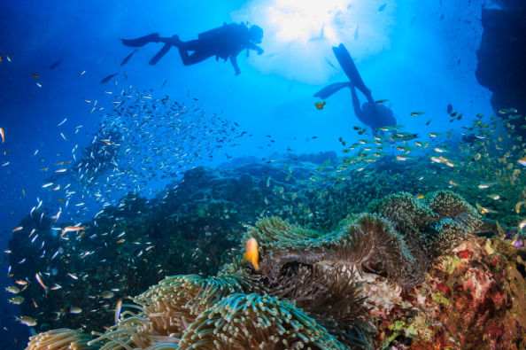 Cours PADI Open Water