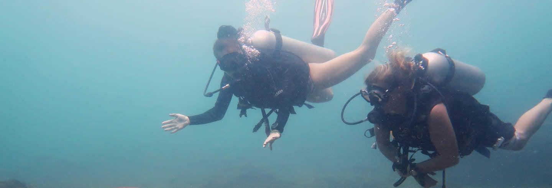 Immersione al Parco marino di Phi Phi