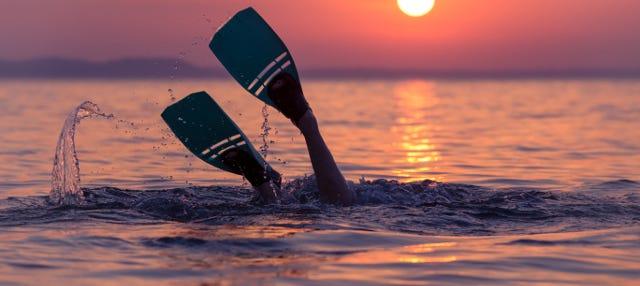 Snorkel al atardecer con cena
