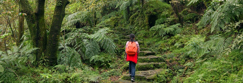 Excursão ao Parque Nacional Yangmingshan