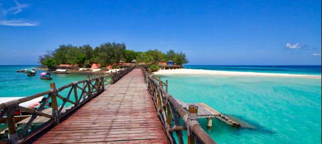 Excursion à Prison Island et sur la plage de Nakupenda