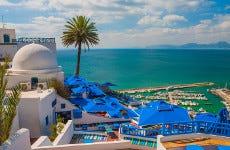 Excursión privada a Túnez, Cartago y Sidi Bou Said