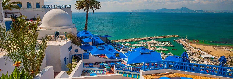 Excursion privée à Tunis, Carthage et Sidi Bou Said
