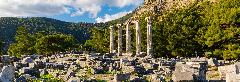 Excursión a Priene, Mileto y Dídima