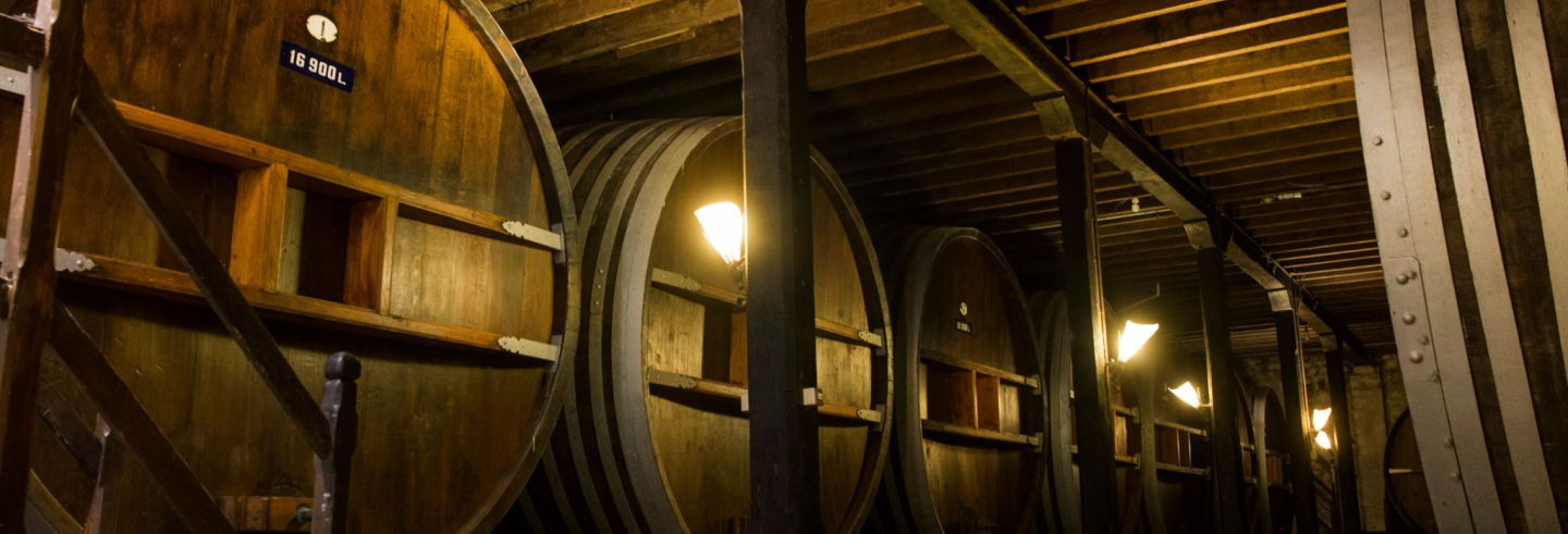Visite du domaine viticole Viña Varela Zarranz