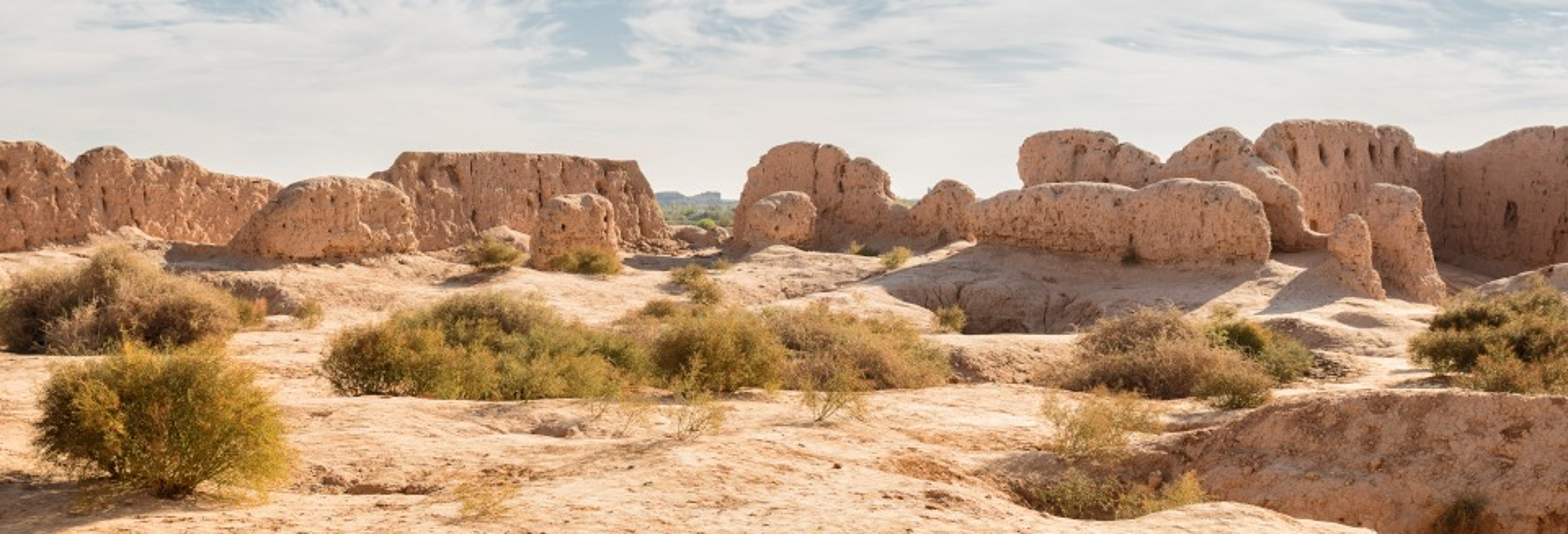 Tour privado de 2 dias pelo deserto Kyzyl Kum