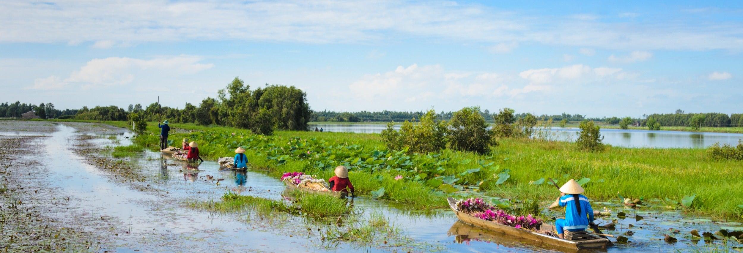 Excursión por el delta del Mekong en lancha rápida