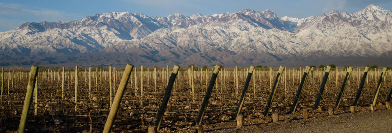 Provincia di Mendoza